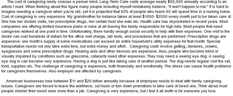 essay about caregiver