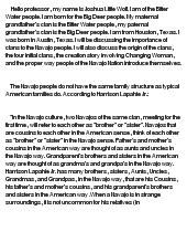 navajo essay