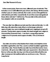 sea otter research paper