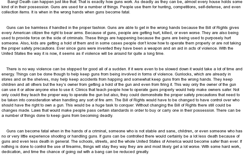 Gun Control Essay Help?